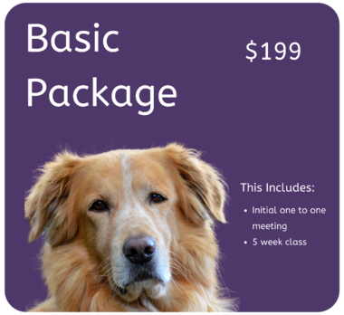 Basic Package $199 Dog Training